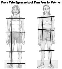 Posture as Reflection of Musculoskeletal Health